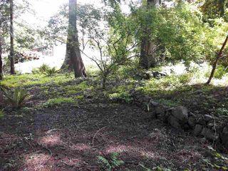 "Photo 2: LOT 48 SKOOKUMCHUK Road in Sechelt: Sechelt District Land for sale in ""Sandy Hook"" (Sunshine Coast)  : MLS®# R2356227"
