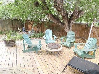 Photo 27: 14812 84 Avenue in Edmonton: Zone 10 House for sale : MLS®# E4152510