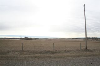 Photo 25: 48551 RGE RD 260: Rural Leduc County House for sale : MLS®# E4153305