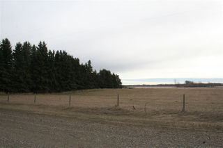 Photo 24: 48551 RGE RD 260: Rural Leduc County House for sale : MLS®# E4153305