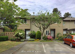 "Main Photo: 17 11160 KINGSGROVE Avenue in Richmond: Ironwood Townhouse for sale in ""CEDAR GROVE ESTATES"" : MLS®# R2369505"