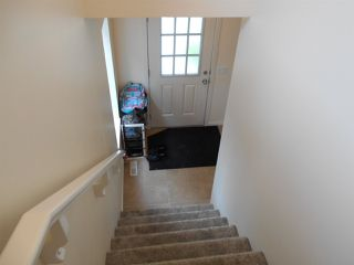 Photo 14: 3634 12 Street in Edmonton: Zone 30 House for sale : MLS®# E4164344