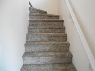 Photo 15: 3634 12 Street in Edmonton: Zone 30 House for sale : MLS®# E4164344