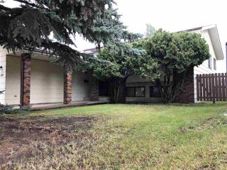 Photo 10: 189 Willow Drive: Wetaskiwin House for sale : MLS®# E4173217