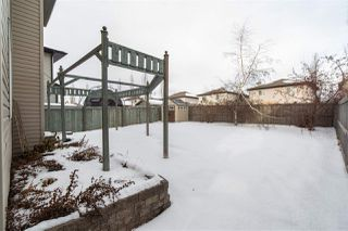 Photo 47: 20420 50 Avenue in Edmonton: Zone 58 House for sale : MLS®# E4183478