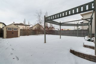 Photo 49: 20420 50 Avenue in Edmonton: Zone 58 House for sale : MLS®# E4183478