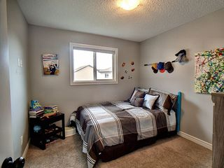Photo 17: 11717 18A Avenue SW in Edmonton: Zone 55 House for sale : MLS®# E4191082