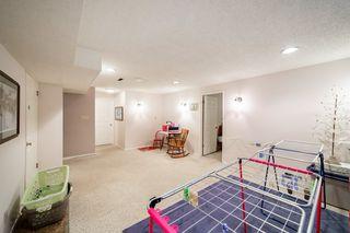Photo 26: 11 Fair Oaks Drive: St. Albert House for sale : MLS®# E4204053