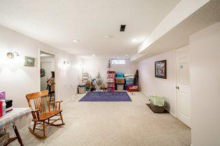 Photo 25: 11 Fair Oaks Drive: St. Albert House for sale : MLS®# E4204053