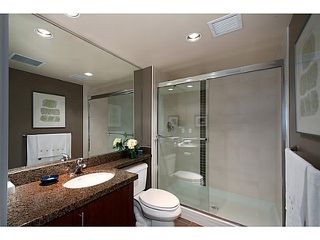 """Photo 19: 405 125 MILROSS Avenue in Vancouver: Mount Pleasant VE Condo for sale in """"Citygate at Creekside"""" (Vancouver East)  : MLS®# V1065427"""