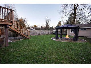 Photo 18: 21078 GLENWOOD Avenue in Maple Ridge: Northwest Maple Ridge House for sale : MLS®# V1103012