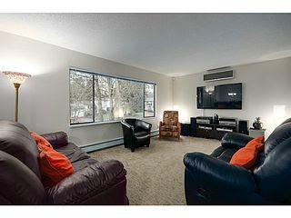 Photo 3: 21078 GLENWOOD Avenue in Maple Ridge: Northwest Maple Ridge House for sale : MLS®# V1103012