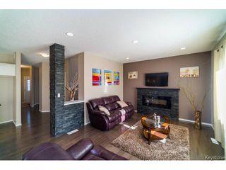 Photo 6: 117 Drew Street in WINNIPEG: Fort Garry / Whyte Ridge / St Norbert Residential for sale (South Winnipeg)  : MLS®# 1504606