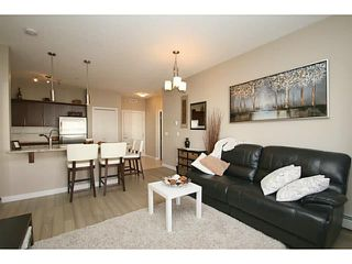 Photo 11: 307 20 ROYAL OAK Plaza NW in Calgary: Royal Oak Condo for sale : MLS®# C3656329