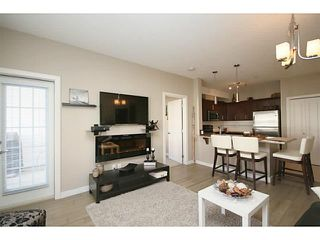 Photo 6: 307 20 ROYAL OAK Plaza NW in Calgary: Royal Oak Condo for sale : MLS®# C3656329