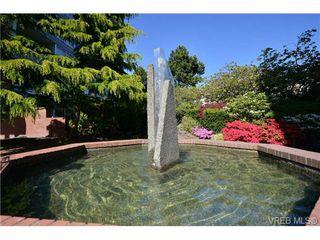 Photo 5: 305 327 Maitland St in VICTORIA: VW Victoria West Condo Apartment for sale (Victoria West)  : MLS®# 702101