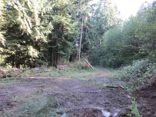 Photo 6: LOT 2 PORT MELLON HIGHWAY in Gibsons: Gibsons & Area Land for sale (Sunshine Coast)  : MLS®# V1135150