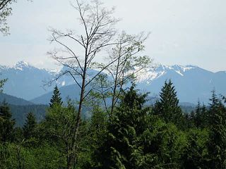 Photo 2: LOT 2 PORT MELLON HIGHWAY in Gibsons: Gibsons & Area Land for sale (Sunshine Coast)  : MLS®# V1135150