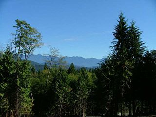 Photo 4: LOT 2 PORT MELLON HIGHWAY in Gibsons: Gibsons & Area Land for sale (Sunshine Coast)  : MLS®# V1135150