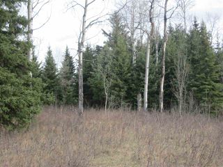 Photo 5: LOT 1 LIKELY Road in Williams Lake: Williams Lake - Rural East Land for sale (Williams Lake (Zone 27))  : MLS®# R2052679