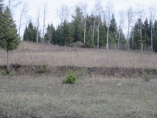 Photo 6: LOT 1 LIKELY Road in Williams Lake: Williams Lake - Rural East Land for sale (Williams Lake (Zone 27))  : MLS®# R2052679