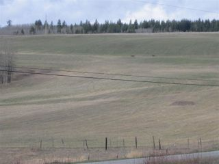 Photo 8: LOT 1 LIKELY Road in Williams Lake: Williams Lake - Rural East Land for sale (Williams Lake (Zone 27))  : MLS®# R2052679