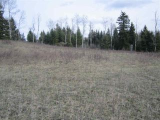 Photo 4: LOT 1 LIKELY Road in Williams Lake: Williams Lake - Rural East Land for sale (Williams Lake (Zone 27))  : MLS®# R2052679