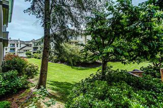 "Photo 18: 113 20120 56 Avenue in Langley: Langley City Condo for sale in ""BLACKBERRY LANE"" : MLS®# R2076345"