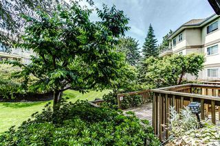"Photo 15: 113 20120 56 Avenue in Langley: Langley City Condo for sale in ""BLACKBERRY LANE"" : MLS®# R2076345"