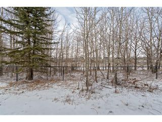 Photo 33: 22 ROCK LAKE View NW in Calgary: Rocky Ridge House for sale : MLS®# C4090662