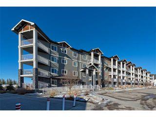 Photo 2: 3407 115 PRESTWICK Villa(s) SE in Calgary: McKenzie Towne Condo for sale : MLS®# C4096888