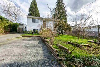Photo 20: 13646 BENTLEY Road in Surrey: Bolivar Heights House for sale (North Surrey)  : MLS®# R2154583