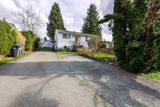Photo 19: 13646 BENTLEY Road in Surrey: Bolivar Heights House for sale (North Surrey)  : MLS®# R2154583