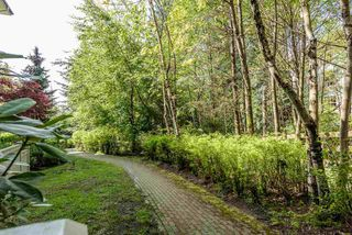 Photo 13: 105 2988 SILVER SPRINGS BOULEVARD in Coquitlam: Westwood Plateau Condo for sale : MLS®# R2165302