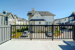 "Photo 15: 2 8438 207A Street in Langley: Willoughby Heights Townhouse for sale in ""YORK By Mosaic"" : MLS®# R2199023"
