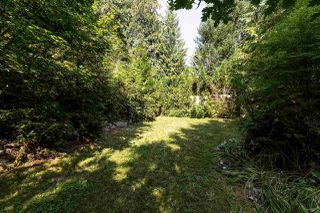 Photo 20: 40521 N HIGHLANDS Way in Squamish: Garibaldi Highlands House for sale : MLS®# R2241027