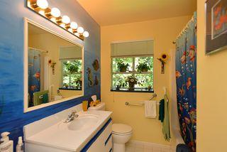 Photo 9: 5487 TRAIL ISLAND Drive in Sechelt: Sechelt District House for sale (Sunshine Coast)  : MLS®# R2245911