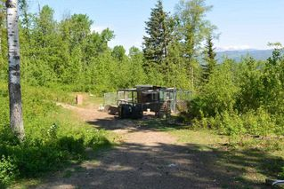Photo 4: 5662 MORRIS Road in Smithers: Smithers - Rural House for sale (Smithers And Area (Zone 54))  : MLS®# R2255055