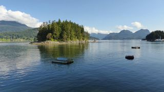 "Photo 3: DL 1428 SHELTER Island in Gibsons: Gibsons & Area House for sale in ""Shelter Island"" (Sunshine Coast)  : MLS®# R2366242"