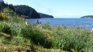 "Photo 5: DL 1428 SHELTER Island in Gibsons: Gibsons & Area House for sale in ""Shelter Island"" (Sunshine Coast)  : MLS®# R2366242"