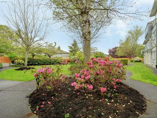 Photo 23: 209 400 Dupplin Road in VICTORIA: SW Rudd Park Condo Apartment for sale (Saanich West)  : MLS®# 410710