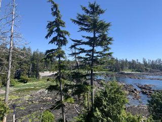Photo 15: 306 596 Marine Dr in UCLUELET: PA Ucluelet Condo for sale (Port Alberni)  : MLS®# 814135