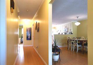 Photo 3: 10269 144 Street in Surrey: Whalley House 1/2 Duplex for sale (North Surrey)  : MLS®# R2379091