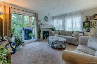 Photo 3: 309 490 Marsett Place in VICTORIA: SW Royal Oak Condo Apartment for sale (Saanich West)  : MLS®# 414478