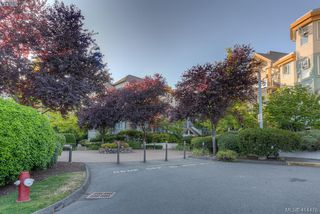 Photo 28: 309 490 Marsett Place in VICTORIA: SW Royal Oak Condo Apartment for sale (Saanich West)  : MLS®# 414478