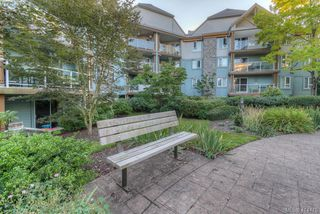 Photo 27: 309 490 Marsett Place in VICTORIA: SW Royal Oak Condo Apartment for sale (Saanich West)  : MLS®# 414478