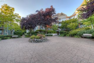 Photo 26: 309 490 Marsett Place in VICTORIA: SW Royal Oak Condo Apartment for sale (Saanich West)  : MLS®# 414478