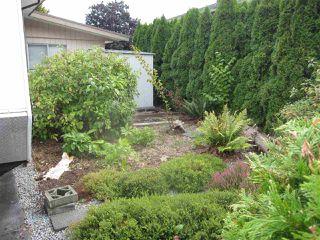 Photo 10: 11920 BURNETT Street in Maple Ridge: East Central House for sale : MLS®# R2404579