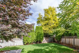 Photo 20: 11008 237B Street in Maple Ridge: Cottonwood MR House for sale : MLS®# R2407120