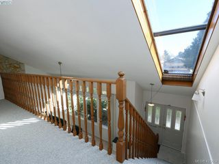 Photo 19: 1592 Thelma Place in VICTORIA: SE Mt Doug Single Family Detached for sale (Saanich East)  : MLS®# 422052